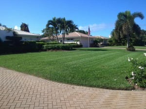 Another lawn serviced in the Moorings Area. Naples, FL
