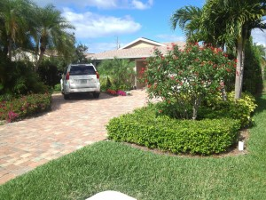 Property in North Naples that I care for.