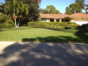 Front lawn of a Moorings property in Naples, FL